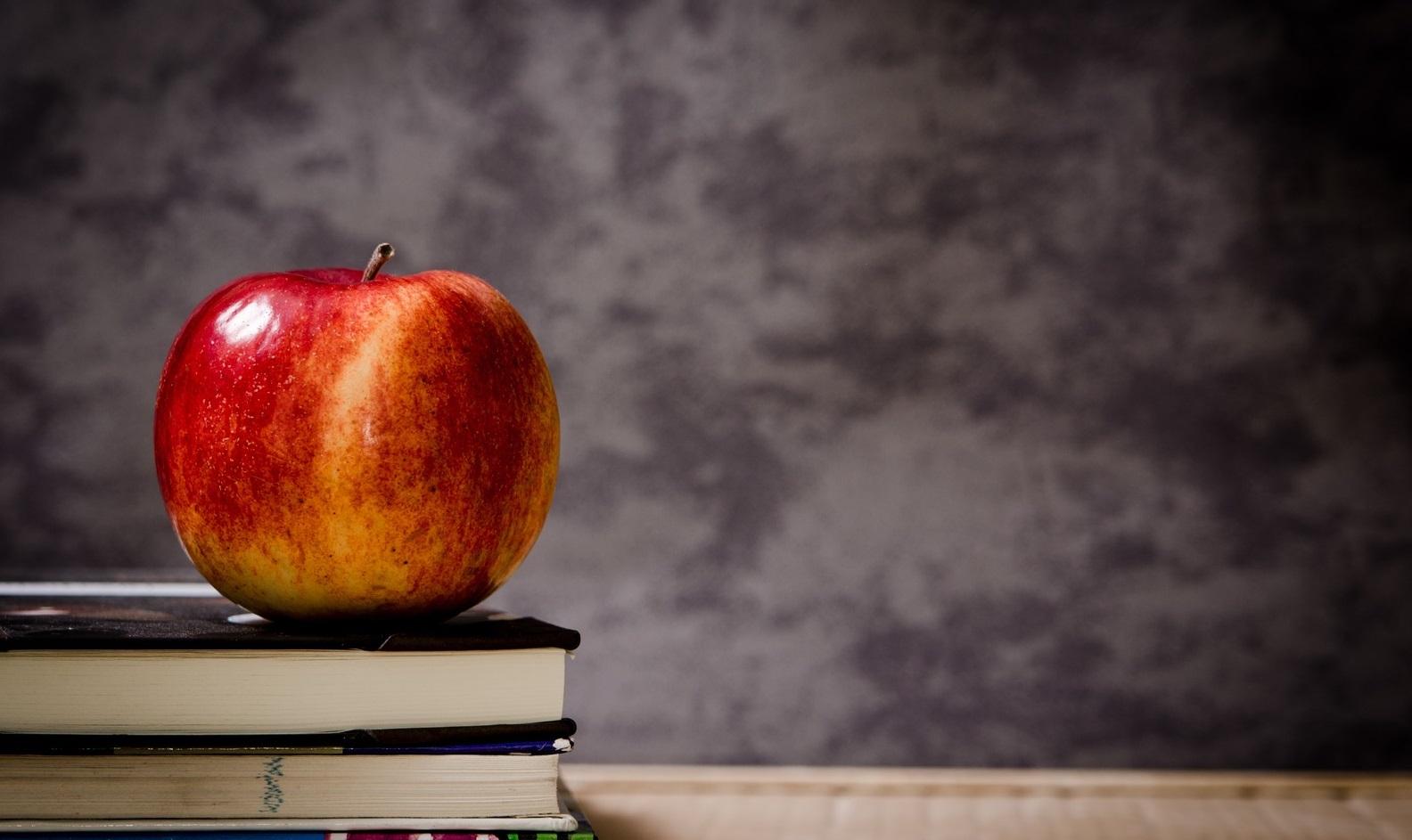 apple-book-plant-fruit-morning-flower-1109951-pxhere.com (4)