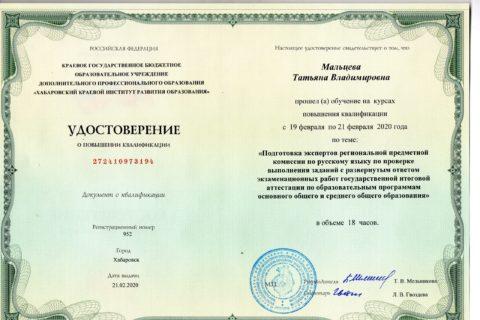 Эксперт ГИА (русский язык)-2